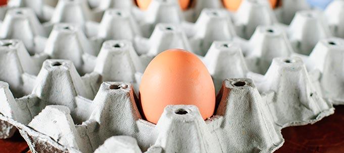 Análisis de alimentos - Huevos